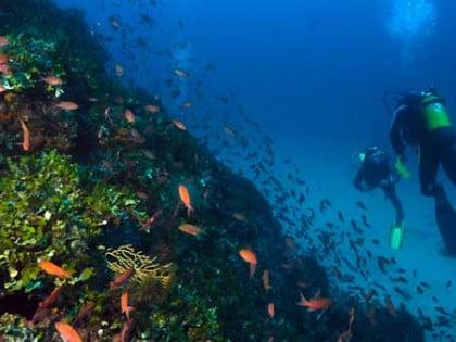 Bucea en Cabo de Gata