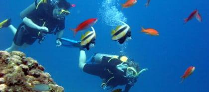 Bucear en Cabo de Gata