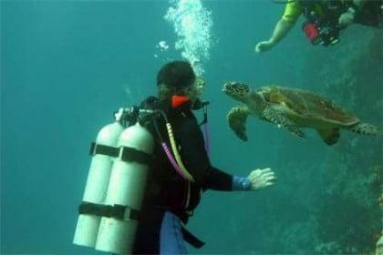 Buceo en Mar Rojo