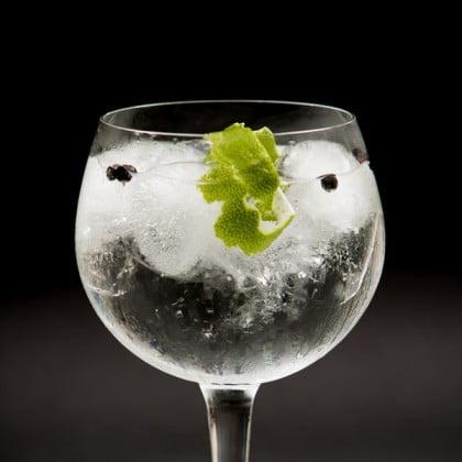 Cata de Gin Tonic