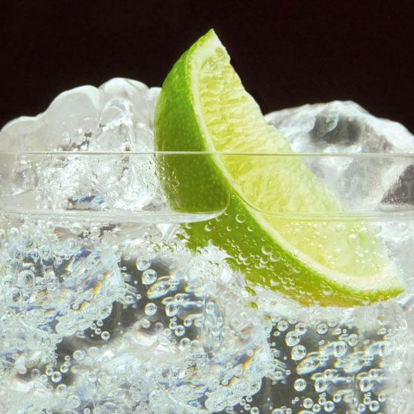 Cata de Gin Tonic en Mallorca