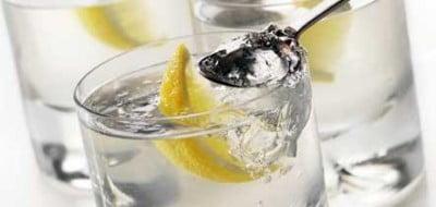 Catas de Gin Tonic
