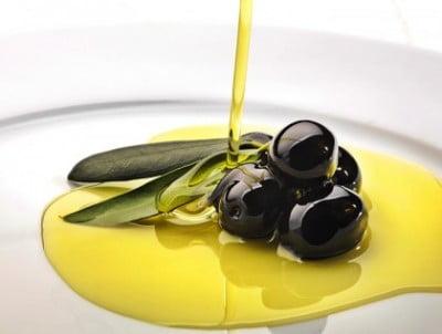 Catas de aceite Jaén