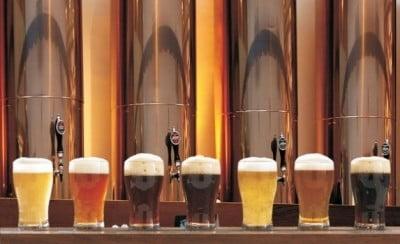 Catas de cerveza Madrid