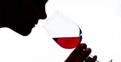 Catas de vino