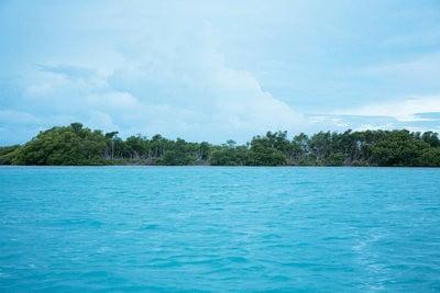 Cayos de Belice playa