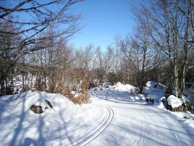 Circuitos de esquí de fondo en Navarra