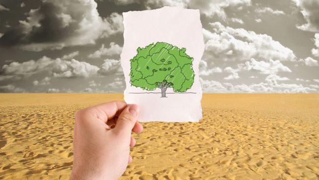 Desertificación y sequía en África