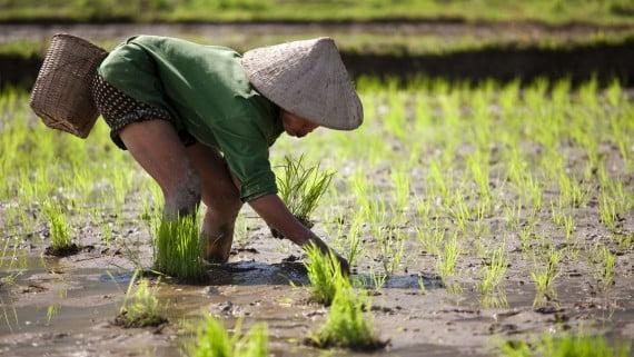 Discriminación a la mujer en la Antigua China