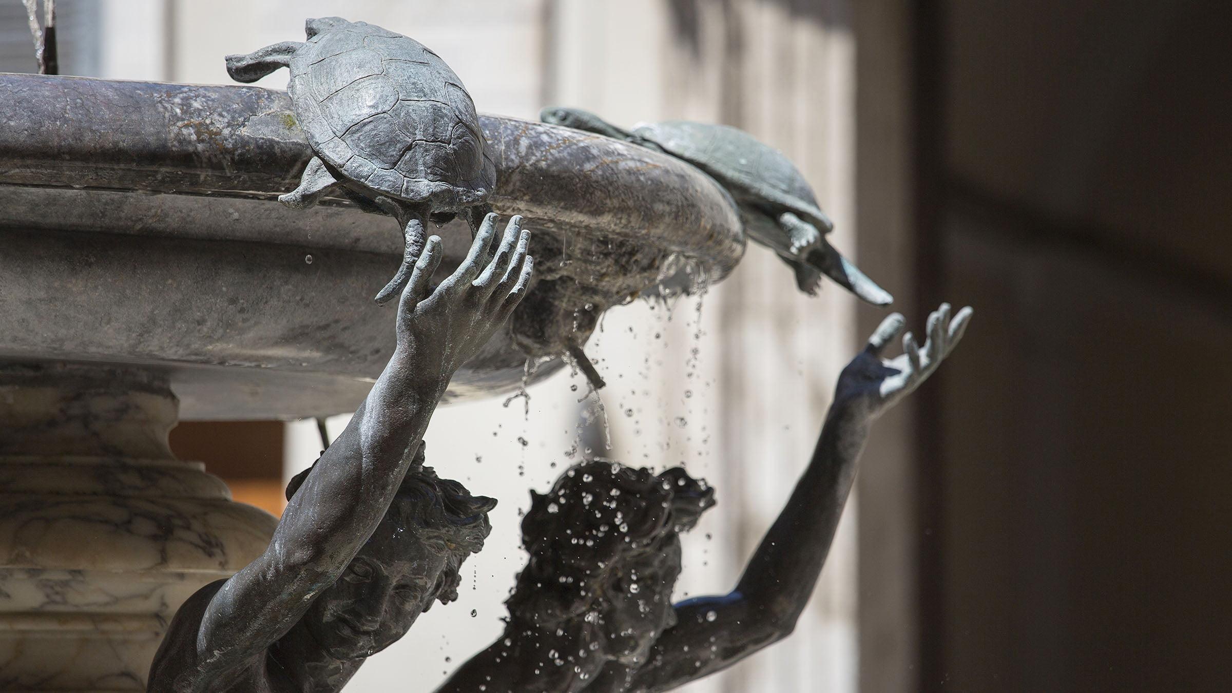 Fuente de las Tortugas