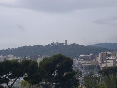 Palma y su Castillo
