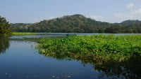 Lago Gatún (Panamá)