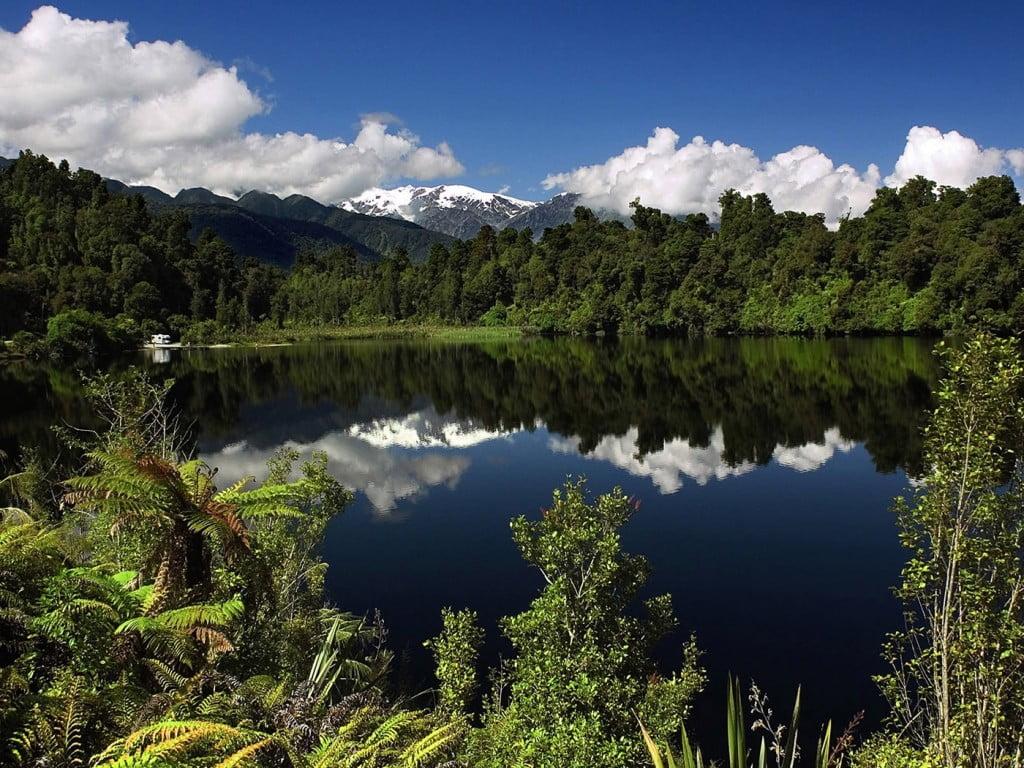 Turismo Verde: Viaje A Nueva Zelanda