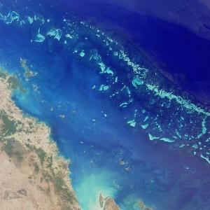 Las 7 maravillas naturales del mundo Gran Barrera de Coral