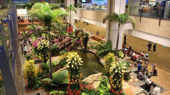 Os xardíns e estanques do aeroporto de Changi (Singapur)