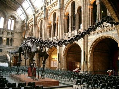 Museo de historia natural - Londres