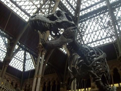 Museos Inglaterra