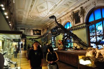Museos en Viena