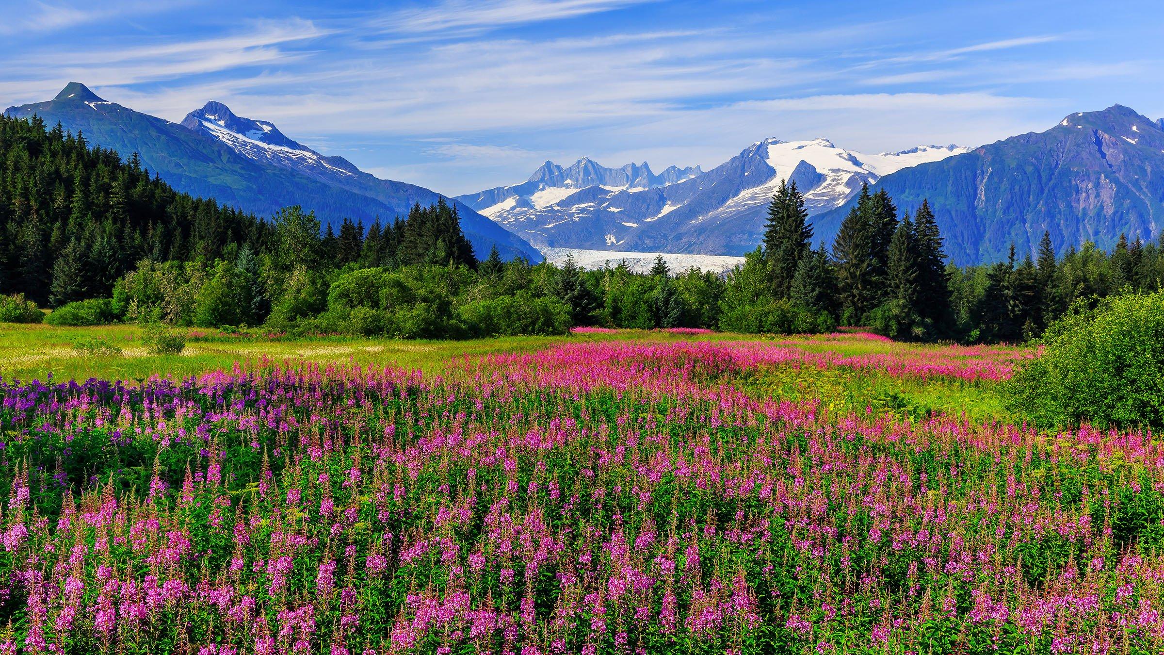 Paisaje de Juneau