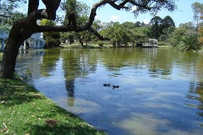Parques de Palermo - Buenos Aires
