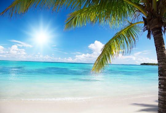 Playa Rincón en Republica Dominicana