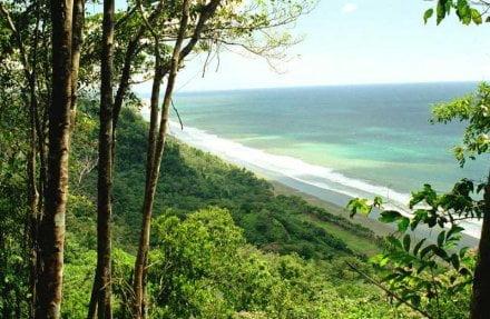 Playa en Pacifico Sur Costarricense