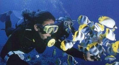 Practica snorkel en Tahiti