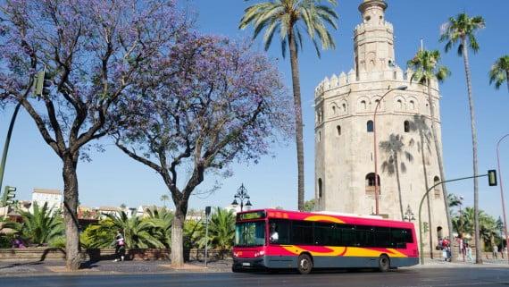Red de autobuses de Sevilla