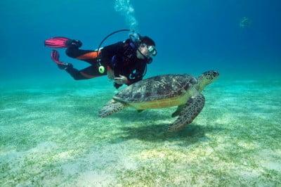 Submarinismo en Filipinas