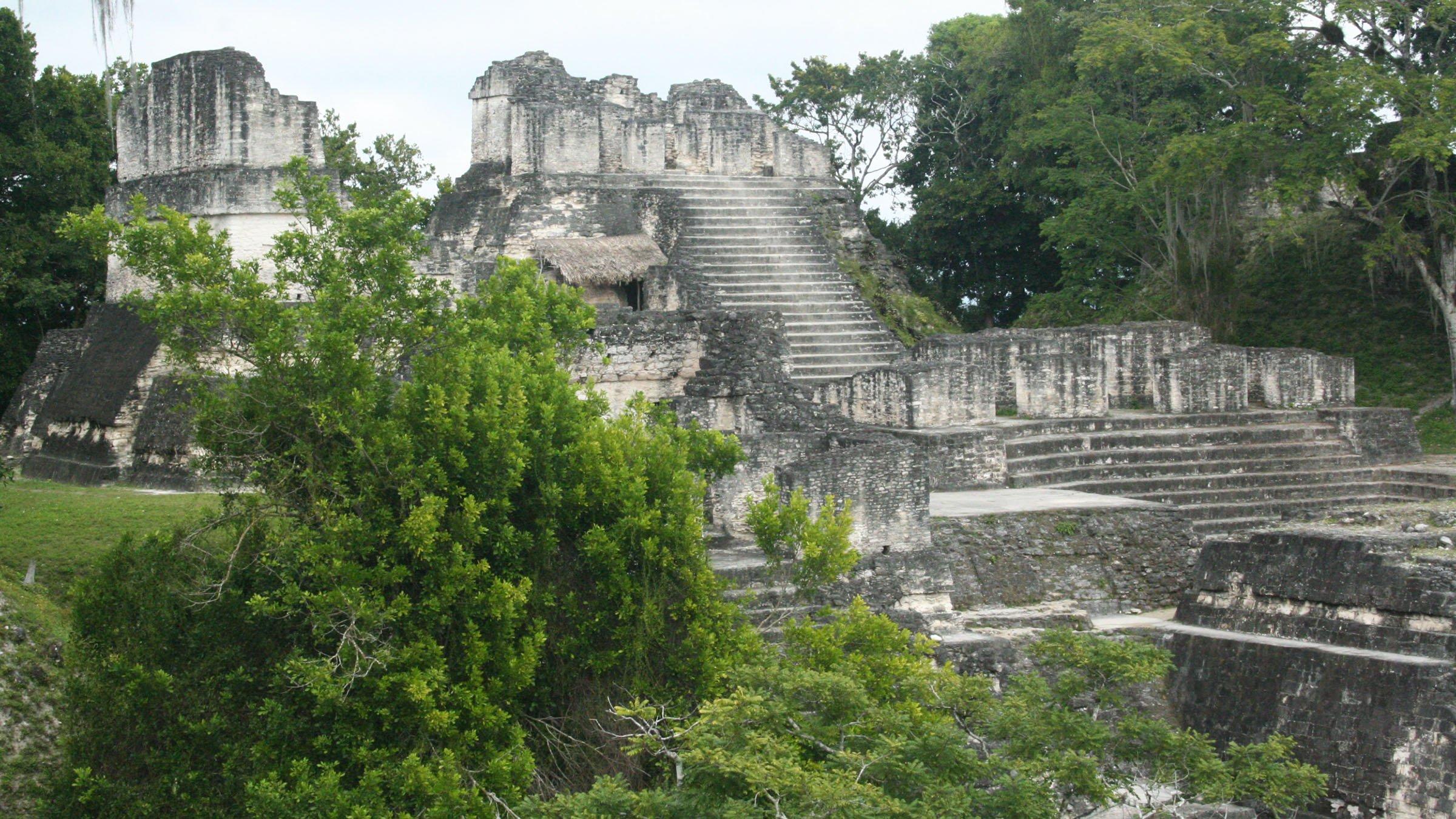 Descubriendo las ruinas mayas tikal for Las construcciones de los mayas