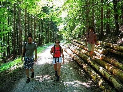 Turismo Rural Selva Negra
