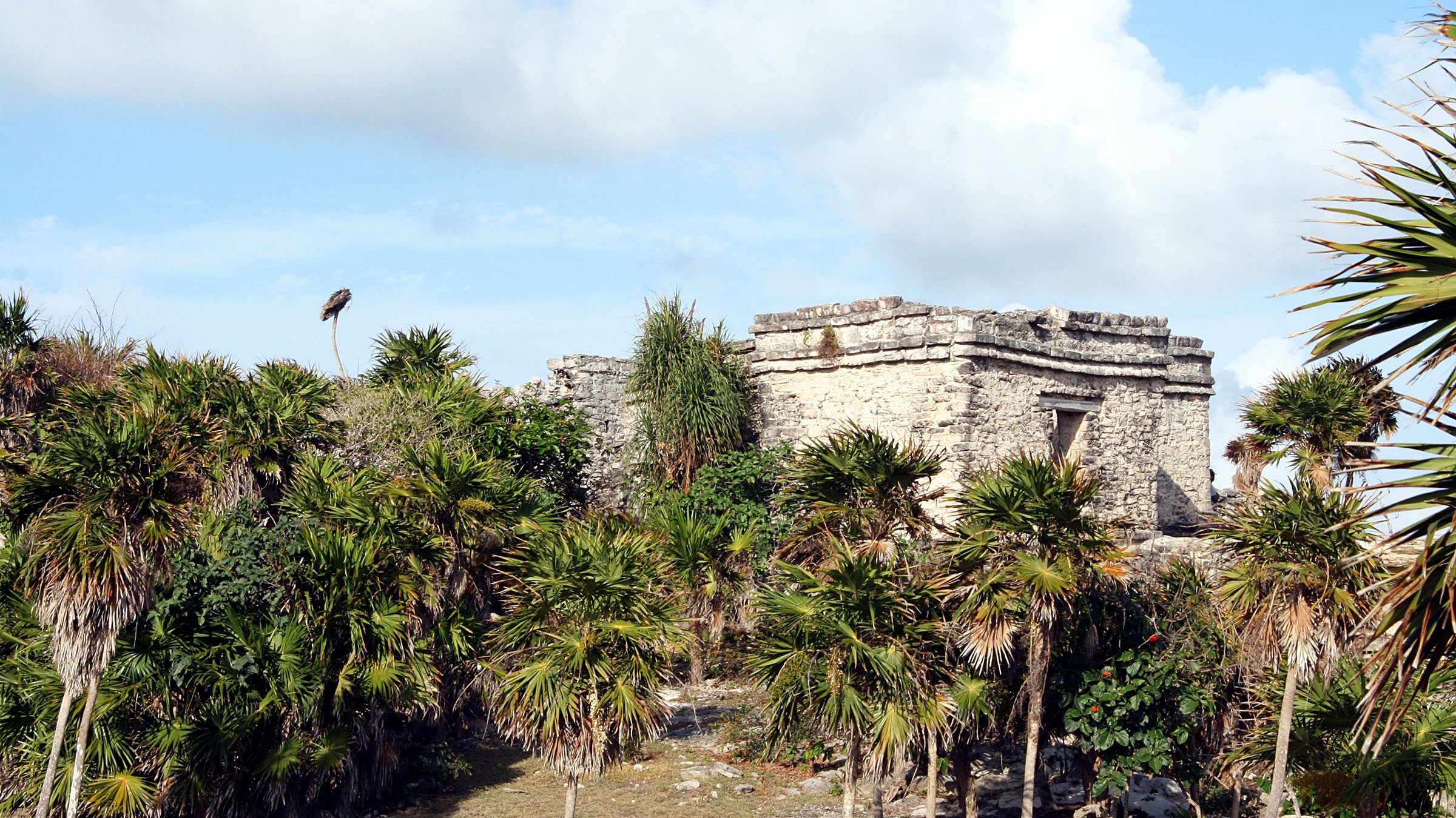Tulum : la culture des Mayas