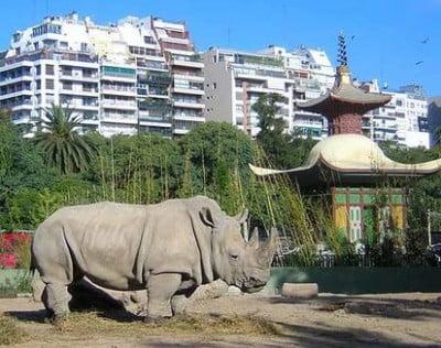 Turismo en Argentina - Zoo Buenos Aires