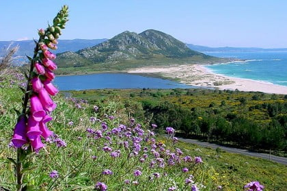 Visitar Playa Area Maior