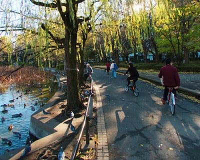 Visitar el Parque Ueno
