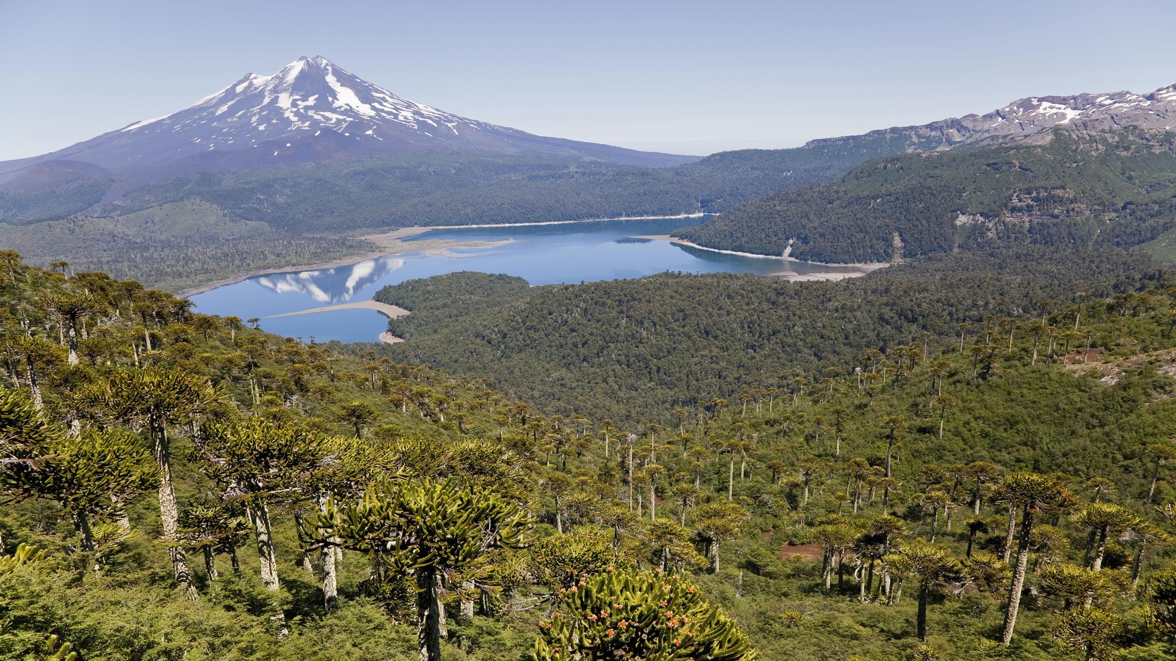 Vistas desde el Parque nacional Conguillío del Volcán Llaima, Chile