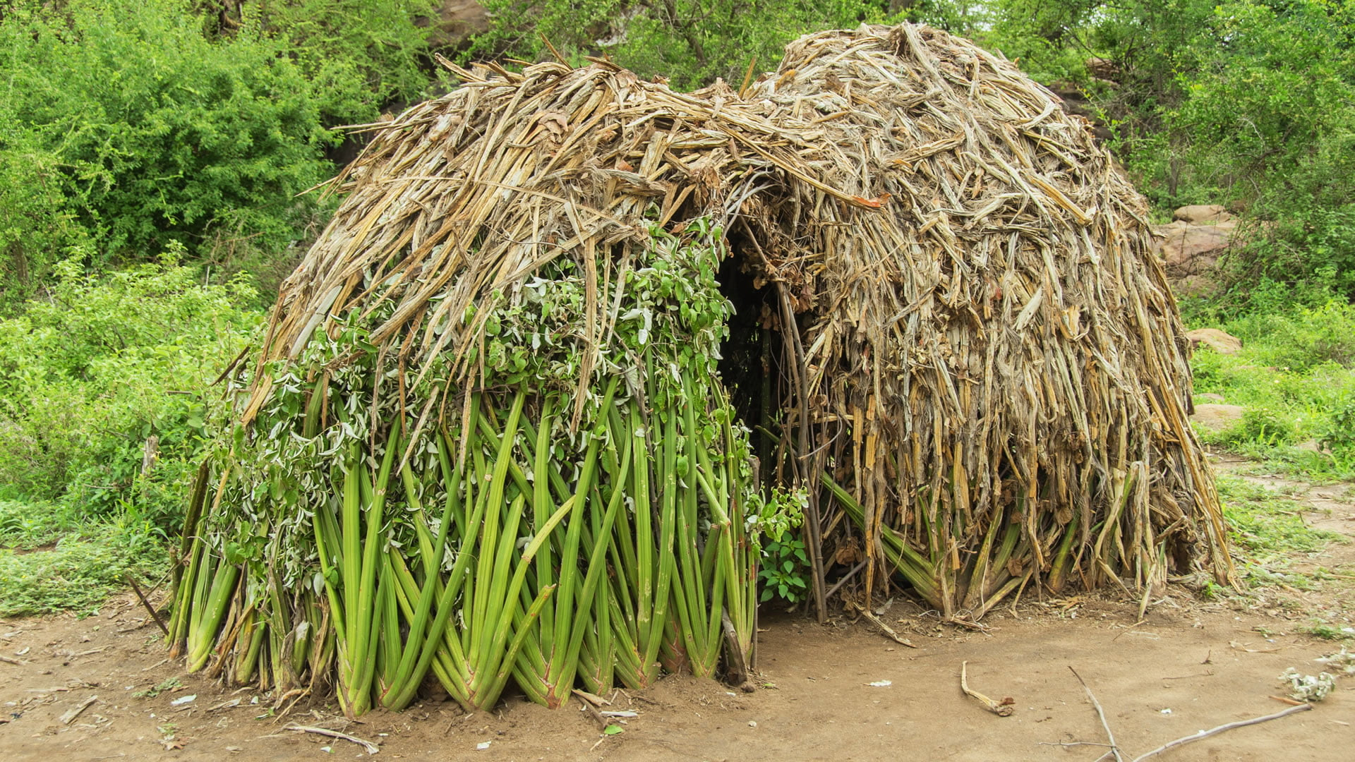Vivienda típica Pueblo Hadza (Tanzania Central)