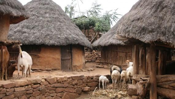 Viviendas típicas de la Comunidad Konso (Etiopía)