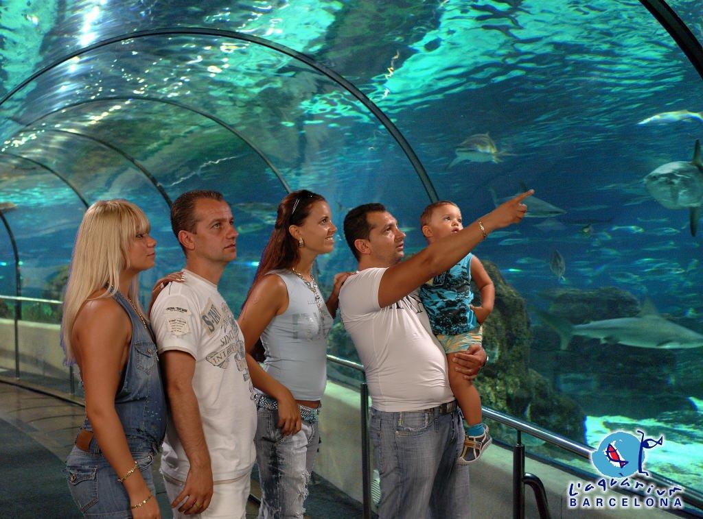 Túnel del Oceanario