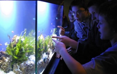 Aquarium de A Coruña