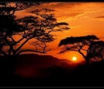 Atardecer en Africa, Alrededor del Mundo con la Cámara