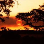 Fin de Semana en Livingstone