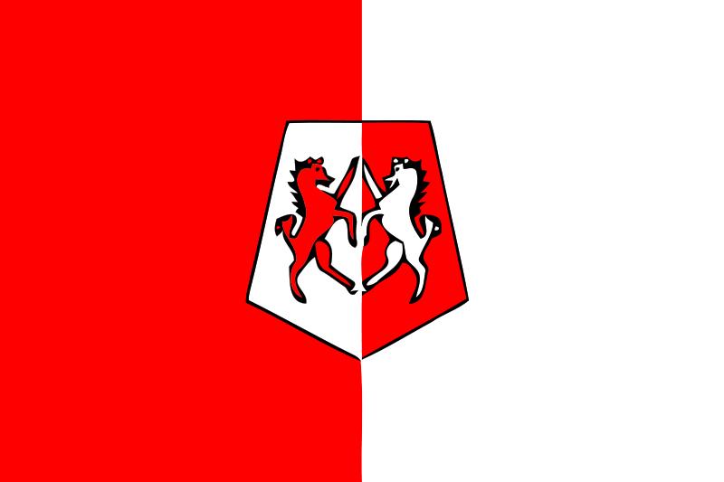 Bandera de Marruecos provincia de Khemisset