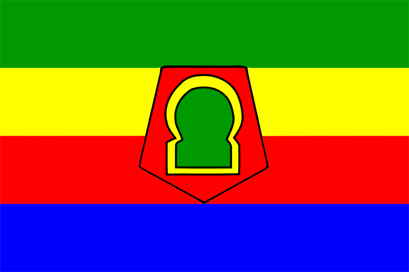 Bandera de Marruecos provincia de Taza