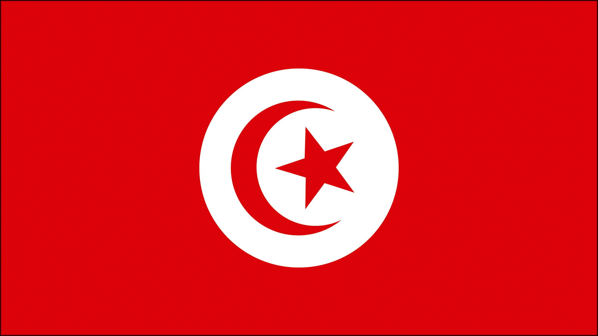 Resultado de imagen para bandera tunez