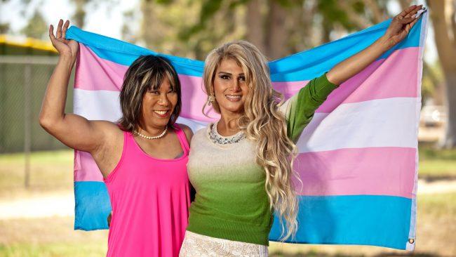 Bandera del orgullo transgénero