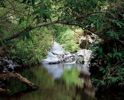Barranco del Infierno, Adeje