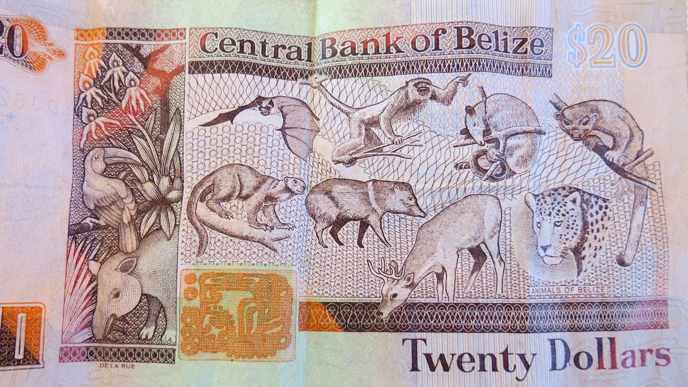 belize circulating coins