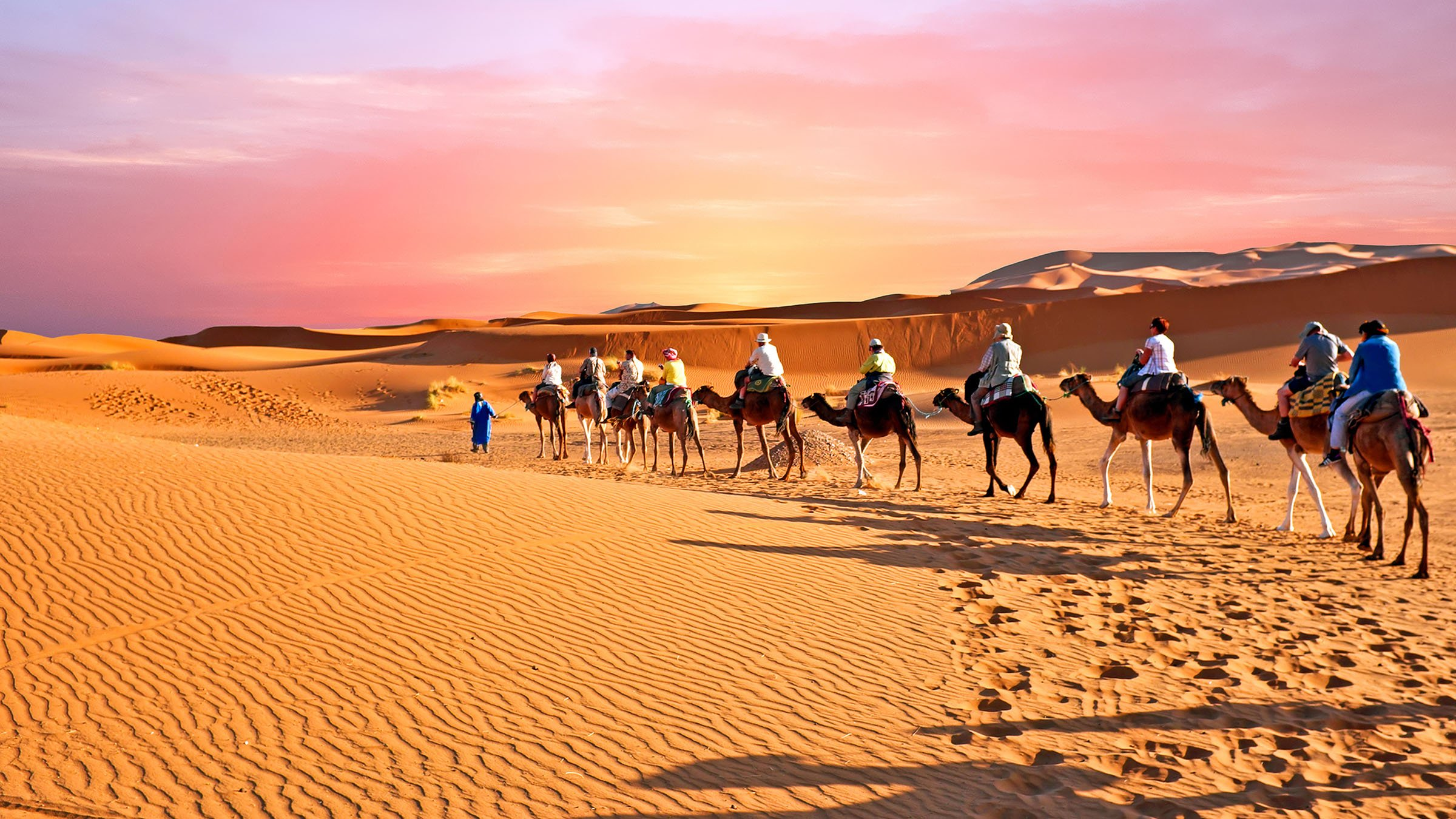 Bioclimático desierto del Sahara
