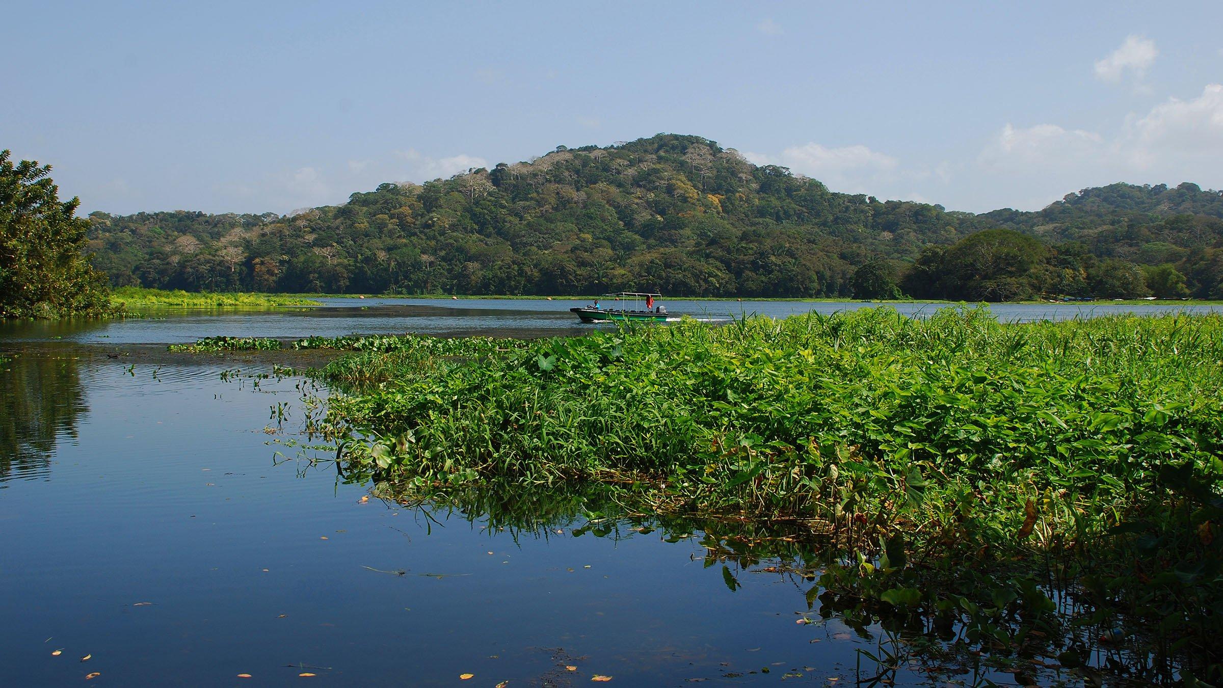Bioclimático  Isla Barro Colorado en Panamá